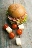 Eigengemaakte hamburger met verse groenten Royalty-vrije Stock Afbeeldingen