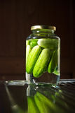Eigengemaakte Ingelegde Komkommer Stock Fotografie