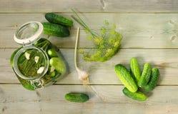 Eigengemaakte ingelegde komkommers Stock Foto
