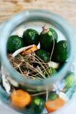 Eigengemaakte ingelegde komkommers Stock Afbeelding