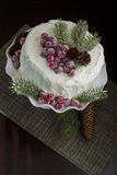 Eigengemaakte Kerstmiscake Stock Foto's