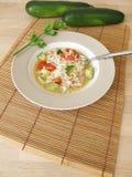 Eigengemaakte kippensoep met courgette en tomaten Royalty-vrije Stock Afbeelding