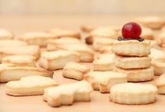 Eigengemaakte koekjes Royalty-vrije Stock Foto's