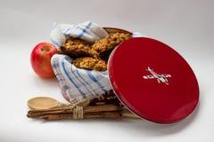 Eigengemaakte koekjes in een kleurrijke metaaldoos Royalty-vrije Stock Foto's