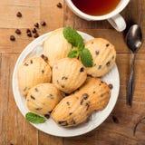 Eigengemaakte koekjes Madeleine royalty-vrije stock fotografie