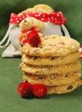 Eigengemaakte koekjes voor Kerstmis Stock Foto