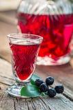 Eigengemaakte likeur met alcohol en chokeberries stock fotografie
