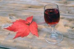 Eigengemaakte liquer (alcoholtint) Stock Afbeeldingen