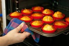 Eigengemaakte muffins Stock Foto's