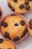 Eigengemaakte Muffins Royalty-vrije Stock Fotografie