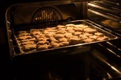 Eigengemaakte nootkoekjes in de oven Royalty-vrije Stock Fotografie