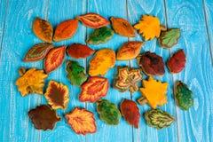 Eigengemaakte peperkoekkoekjes in de vorm van esdoorn, linde en eiken bladeren Stock Foto