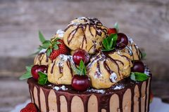 Eigengemaakte profiterolecake met aardbeien en kersen stock afbeelding
