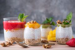 Eigengemaakte pudding van Chia-zaden en amandelmelk met graangewassen en puree van kiwi, aardbei en mango met okkernoten en munt  royalty-vrije stock foto
