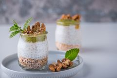 Eigengemaakte pudding van Chia-zaden en amandelmelk met graangewassen en puree van kiwi met okkernoten en munt in glaskruiken Gez stock afbeeldingen