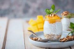 Eigengemaakte pudding van Chia-zaden en amandelmelk met graangewassen en puree van mango en kiwi met okkernoten en munt in glaskr royalty-vrije stock afbeeldingen