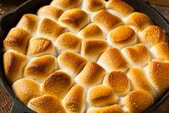 Eigengemaakte S'mores-Onderdompeling met Graham Crackers stock afbeelding