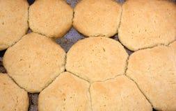 Eigengemaakte suikerkoekjes op pan Royalty-vrije Stock Afbeelding