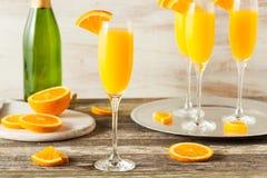 Eigengemaakte Verfrissende Oranje Mimosacocktails Stock Afbeeldingen