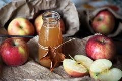 Eigengemaakte verse appelcider in een kruik Stock Foto