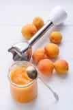 Eigengemaakte verse die abrikozenpuree door mixer wordt gemaakt Stock Foto