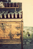 Eigengemaakte wilde Bulgaarse aardbeijam Stock Afbeelding