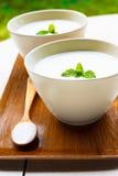 Eigengemaakte yoghurt Royalty-vrije Stock Foto