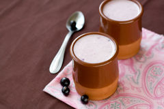 Eigengemaakte yoghurt in een ceramische kom Stock Afbeelding