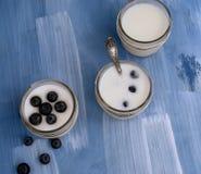 Eigengemaakte yoghurt met bessen Royalty-vrije Stock Afbeeldingen