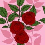Eigenhändig zeichnendes Rosen-Muster Lizenzfreie Stockfotos