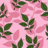 Eigenhändig zeichnendes Rosen-Muster Stockfoto