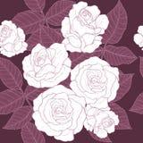 Eigenhändig zeichnendes Rosen-Muster Stockfotos