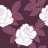 Eigenhändig zeichnendes Rosen-Muster Lizenzfreies Stockfoto