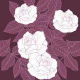 Eigenhändig zeichnendes Rosen-Muster Lizenzfreie Stockfotografie
