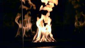 Eigentijds zet biofuel op het close-up van de ethylalcohol fireplot open haard op stock videobeelden