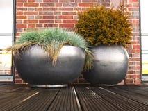 Eigentum - Pflanzer - Terrasse - Garten Lizenzfreie Stockbilder