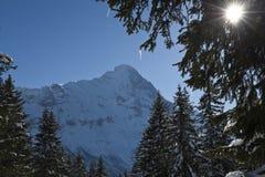 Eiger en hiver Photographie stock