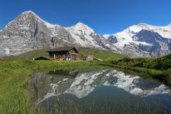 Eiger, Monch & Jungfrau Bernese Alps Switzerland. North face of Eiger (3970m), Moench (4107m) and Jungfrau (4158m) (from left to right) reflecting in a small Royalty Free Stock Photo