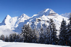 Swiss Mountains in Winter with Snow Royalty Free Stock Image