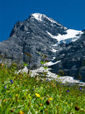 Eiger mountain in Switzerland. Panorama with Eiger (3970 m) mountain in Switzerland Alps. The Eiger is a mountain in the Swiss Alps (Bernese Oberland) with a stock image