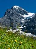 Eiger mountain in Switzerland stock image