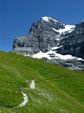 Eiger mountain (Switzerland). Panorama with Eiger (3970 m) mountain in Switzerland Alps royalty free stock photography