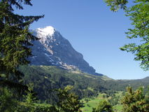 Eigerview de Grindelwald Switzerland Imagem de Stock