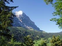 Eigerview von Grindelwald die Schweiz Stockbild