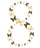 Eight. Number butterfly show isolated Stock Images