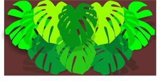 Eight big green leaves monsteras. Vector imagine on black fon with shadows Royalty Free Stock Photos
