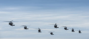 Eight Black Hawk helicopters Stock Photography