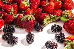 Eight blackberry`s and some sweet fresh red strawberry`s. The garden strawberry or simply strawberry; Fragaria × ananassa is a widely grown hybrid species of Stock Images