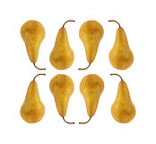 Eight Bosc pears Stock Photo
