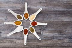 Eight ceramic spoons arranged to a star with colorful spices Stock Photography